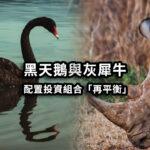 黑天鵝與灰犀牛——配置投資組合,「再平衡」降低風險